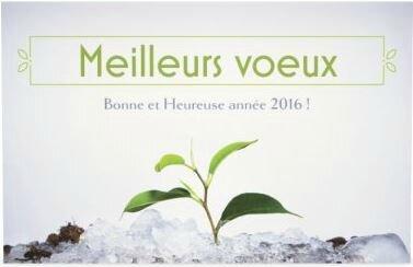 2016 MEILLEURS VOEUX