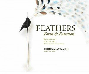 Book Feathers Form & Function
