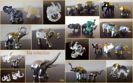 ma_collection__l_phants