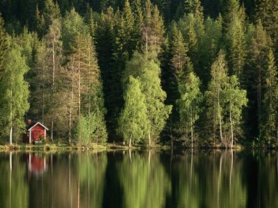 layne-kennedy-sauna-house-at-edge-of-forested-lake