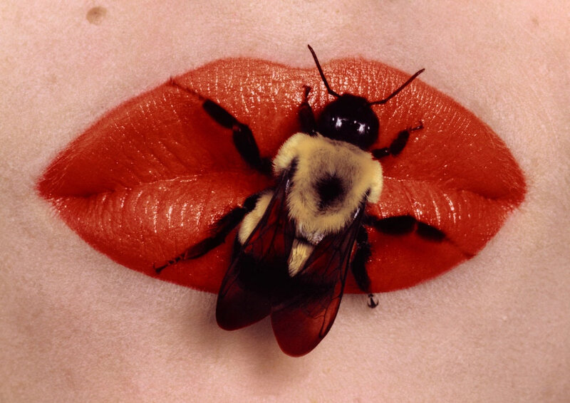 bee_on_lips_new_york_1995 Red