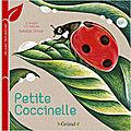 Petite coccinelle / petite libellule / petite grenouille / petit papillon