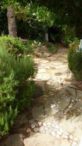P1010358 jardin détail