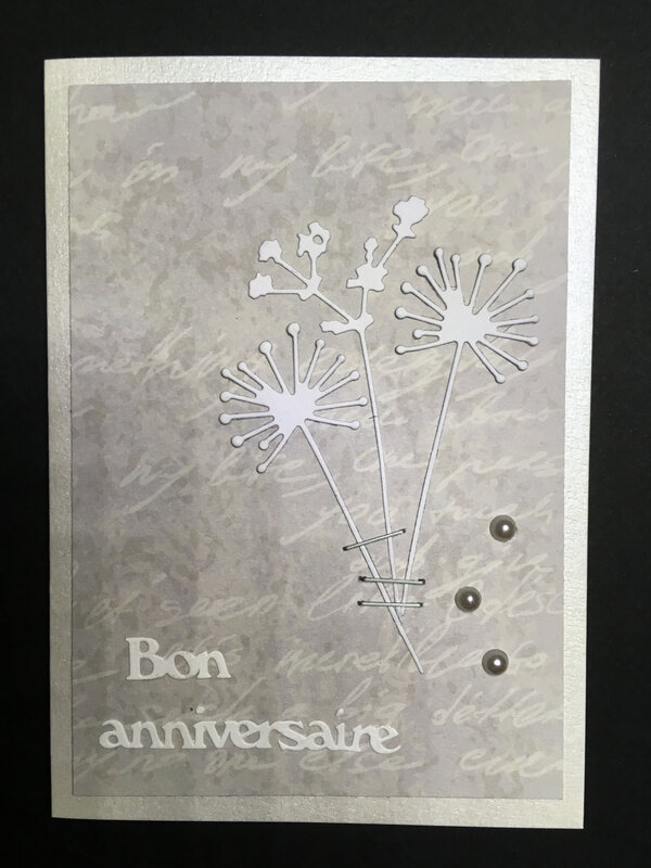 Carte Cardlift Clean and Simple janvier 2019 (1)