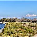13-berre l'étang- promenade à la pointe de l'étang...
