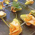 Fleurs de courgettes farcies au thon et yaourt de brebis