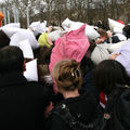 16-Pillow Fight 2010_2592