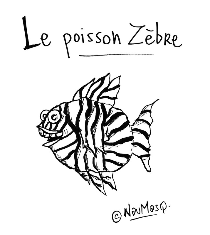 TFM_Animots_Poisson_Zèbre