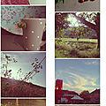 Photomatons d'été...