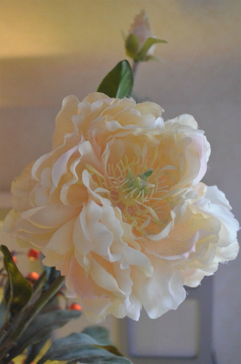 fleurcreme