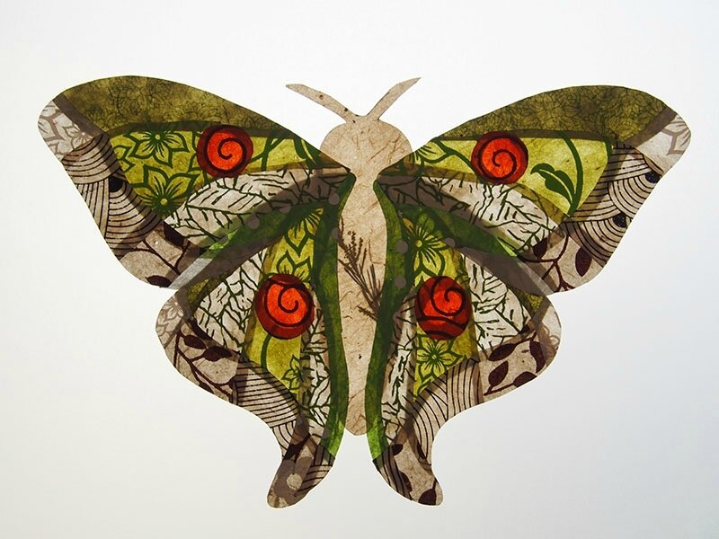 3767 papillon
