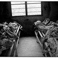 genocide 2(par Bruce Clarke)