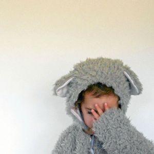 petit ours gris 6 - Copie (2)