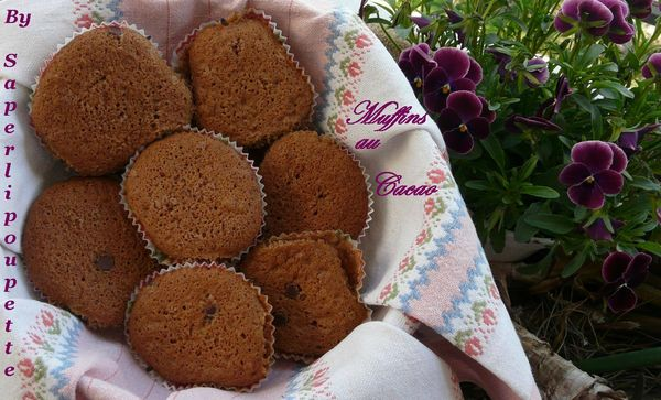 Muffins tout cacao