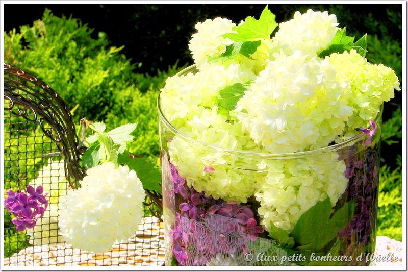 Bouquet de boule de neige et lilas (10)