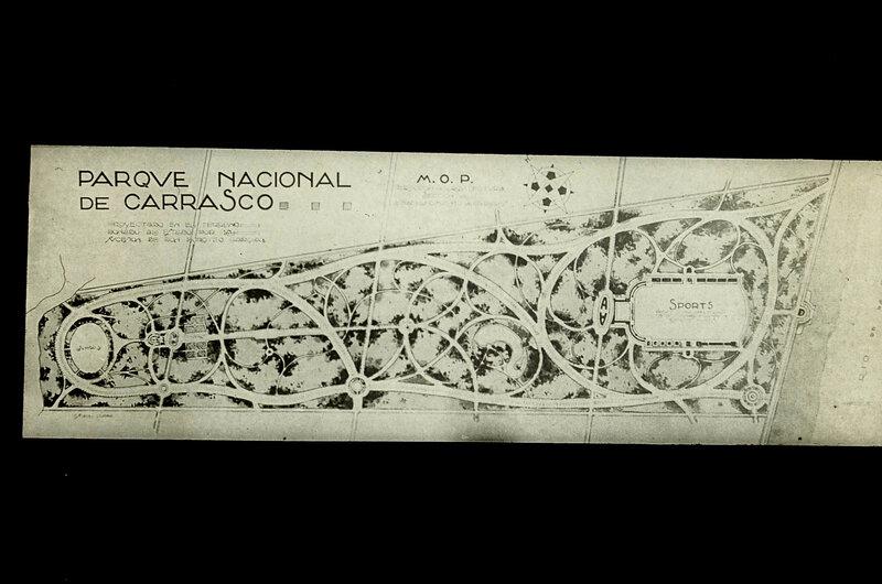 PLANO DEL PARQUE de CARRASCO