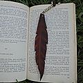 La plume magique pour la richesse du maitre marabout competent iffa