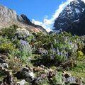 146 Vers le Col de Pucajirca