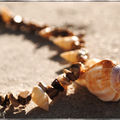 Collier Coquillage/Jaspe