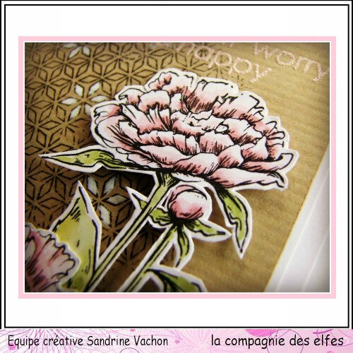 CARTE SMILE dt LCDE (3) - Copie