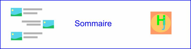 Logo Sommaire_3