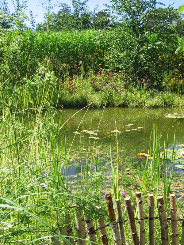 Chaumont sur Loire - août 2009