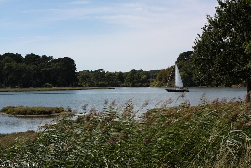 001886 Larmor-Baden - Le Golfe du Morbihan - La Rivière d'Auray face au Lycée de Kerplouz