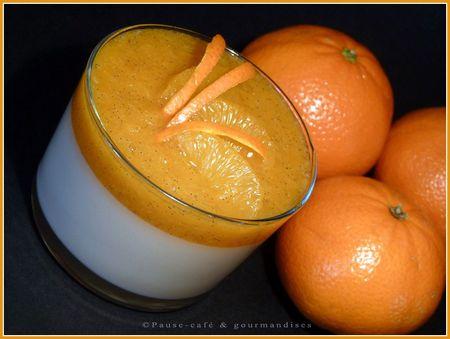 panna_cotta_chocolat_blanc_et_marmelade_de_mandarines__48_
