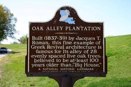 Louisiana_Oak_Alley_14