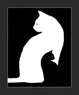 chat+noir+chat+blanc