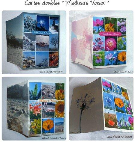 combinaison cartes meilleurs voeux de Céline Photos Art Nature