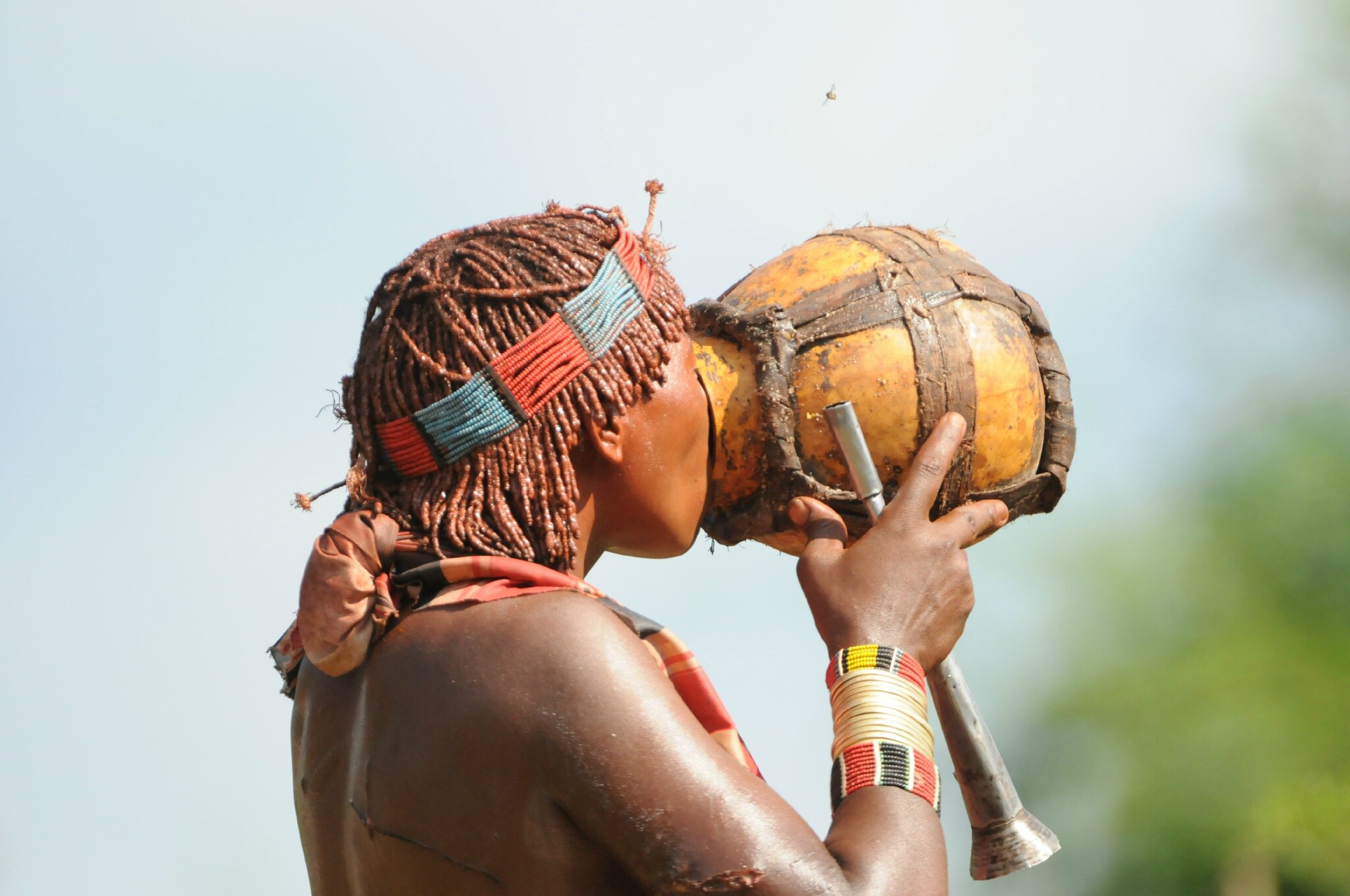 omo valley Hammer girl drinking traditional alcohol
