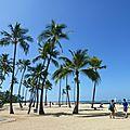 Lagoon Waikiki (119)