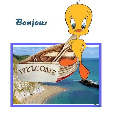 bonjour_123