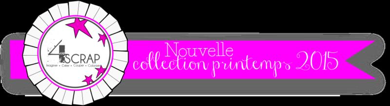 Banni_re_nouvelle_collection