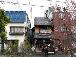 Canalblog_Tokyo03_13_Avril_2010_080