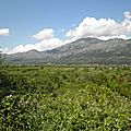 croatie - paysage2