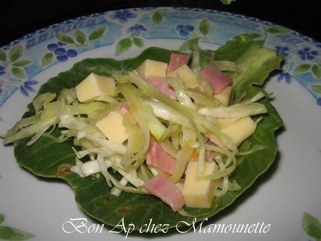 Salade_vend_enne_au_chou_blanc_du_jardin_bonapchezMamounette