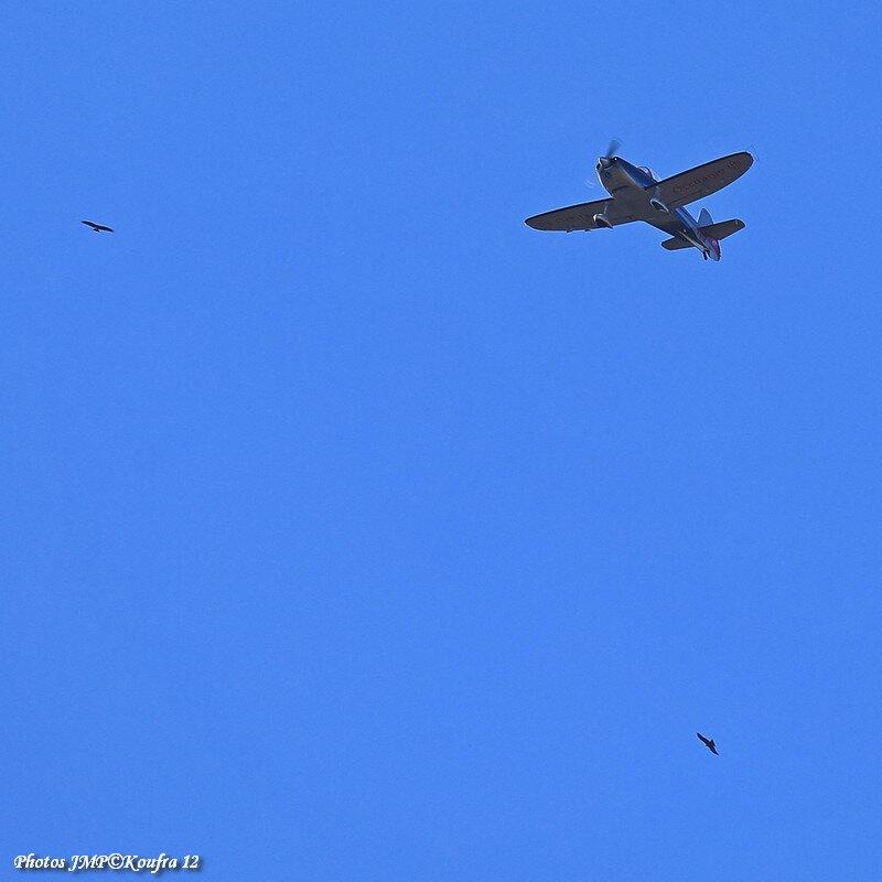 Photos JMP©Koufra 12 - La Cavalerie - Aérodrome - avion - Voltige - 03032019 - 0537