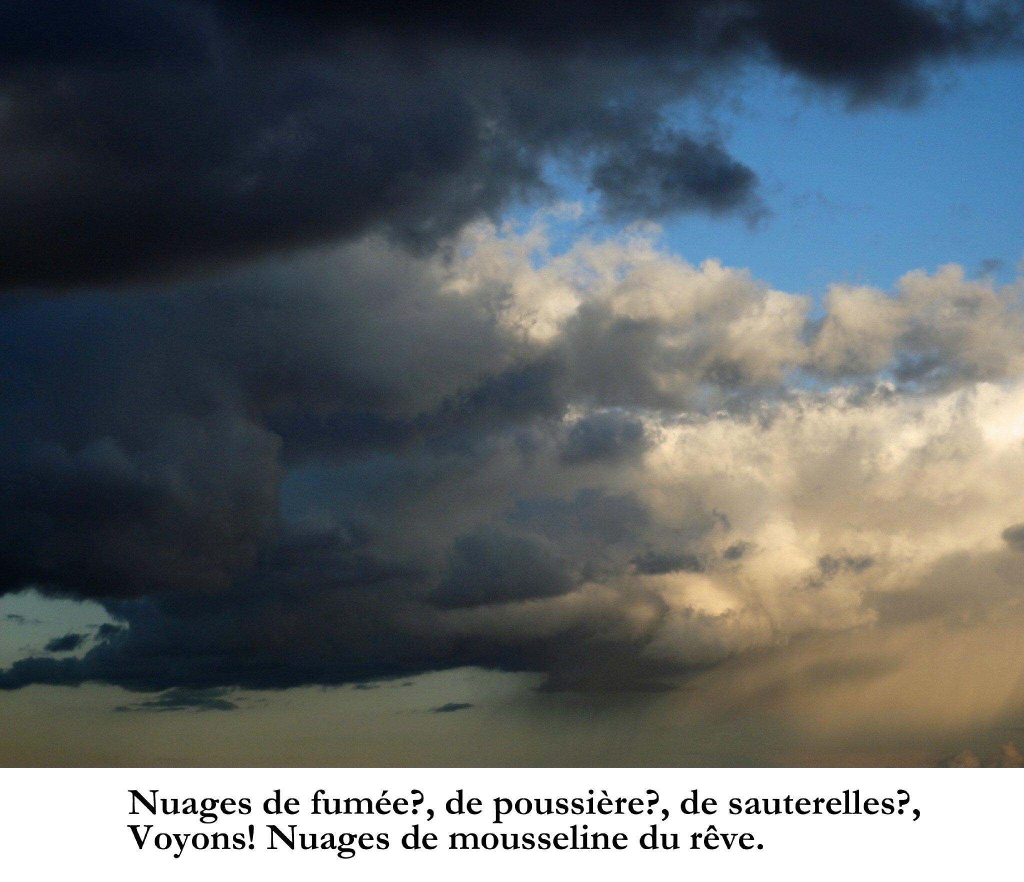 """A ciel couvert"" ""A cielo cubierto"" Art nuages - Arte nubes - Art Contemporain - Hector Hernandez Rubilar et Waldo Rojas"