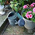 Windows-Live-Writer/jardin-charme_12604/DSCN0617_thumb