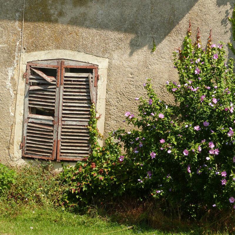A PORTE FENETRE GRANDE GRILLES VASQUES FLEURS125