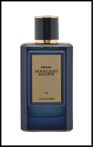 prada moonlight shadow 2