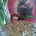 Un gâteau d'anniversaire au chocolat digne de ce nom !