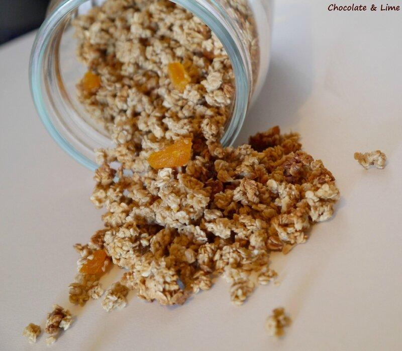 Granola_abricots_secs2