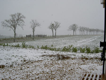 24_mars_2008__5_