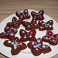 Papillons au chocolat façon financiers