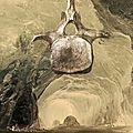 L'esprit dans la grotte II