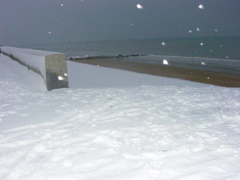 charme en hiver (9)