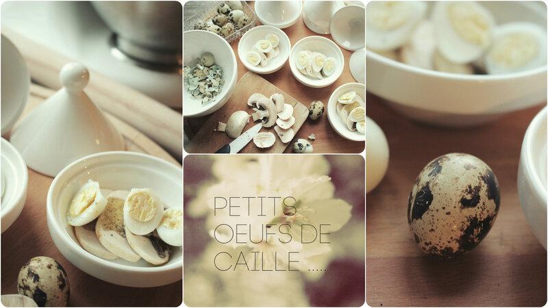oeufs_de_caille